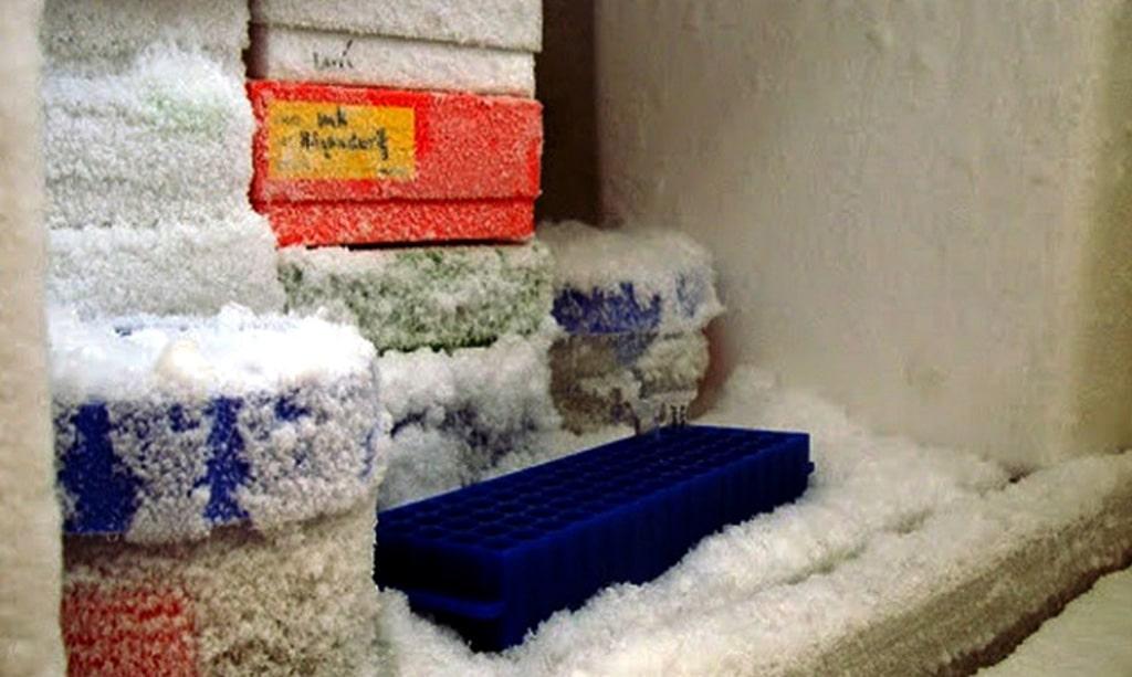 علت یخ زدن داخل یخچال سامسونگ
